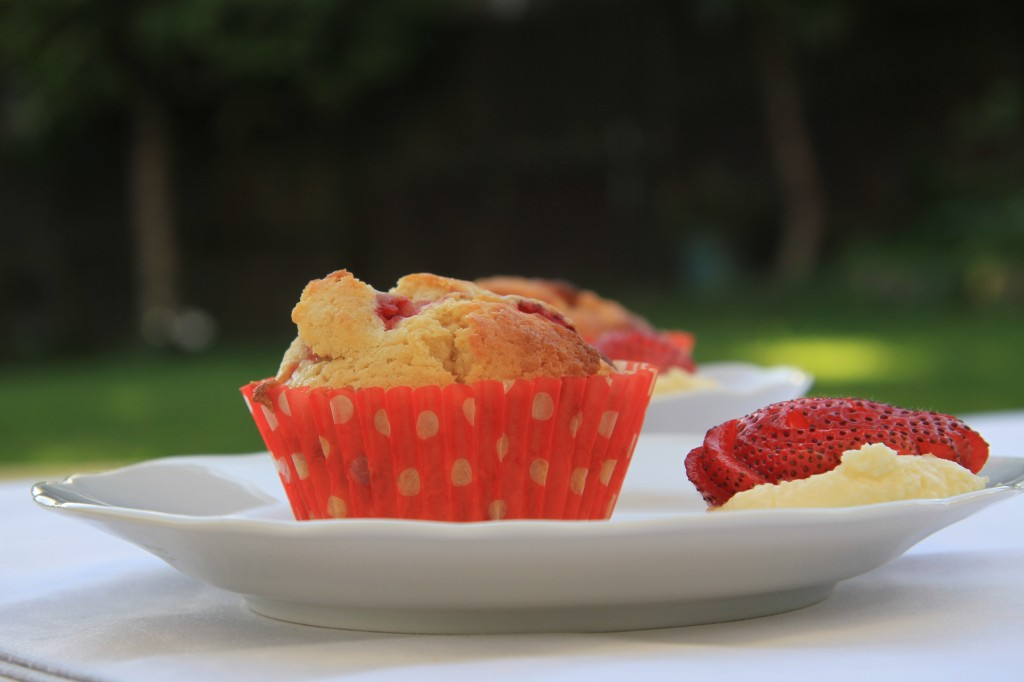 food_muffins_cup_cake