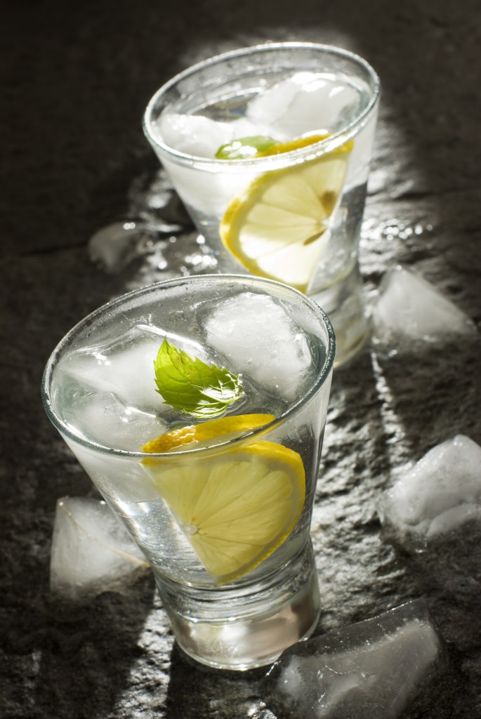 fresh vodka with lemon and ice close up